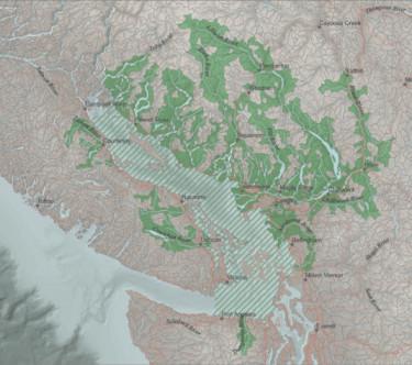 suzuki-watersheds1